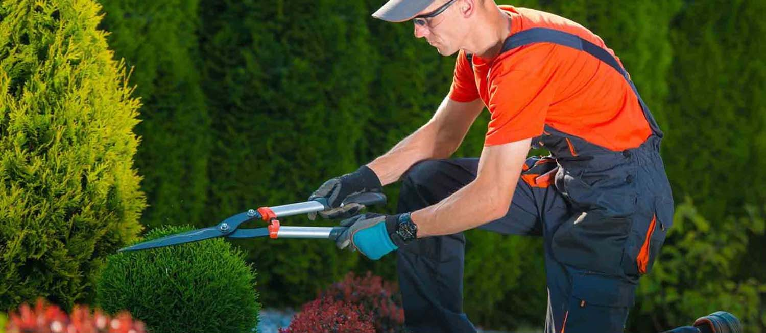 All Of The Above Landscaping, LLC 4